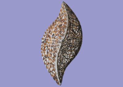 wandleuchte-fanny-bambusringe-u-rattangeflecht-mit-elektronik_wandmontage-30cm